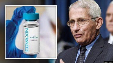 "अमेरिका के शीर्ष रोग विशेषज्ञ डॉ.एंथनी फा उची ने कहा ""भारत सबसे अच्छा वैक्सीन उत्पादक"""